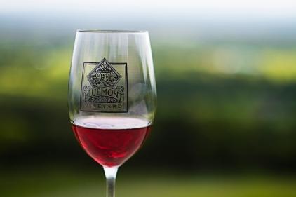 Bluemont Wine Glass